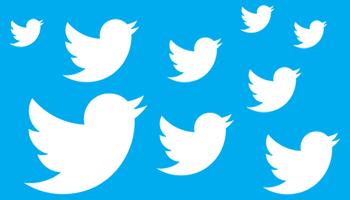 Follow the School Twitter Account